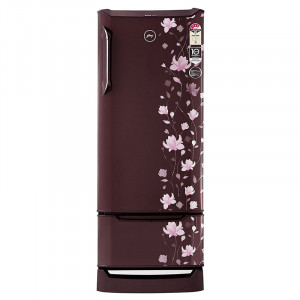 Godrej 255 L 4 Star RD EDGE DUO 255 PD INV4.2  Direct-Cool Single-Door Refrigerator (Zinnia)