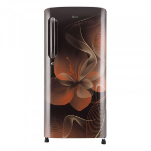 LG 190 L GL-B201AHDX  4 Star Single -Door Refrigerator (Hazel Dazzle)