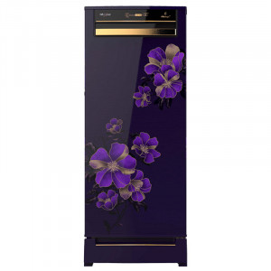 Whirlpool  200 L 4 Star 215 Vitamagic Pro Roy 4S Direct Cool Single Door  Refrigerator (Purple Electra)